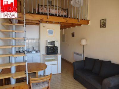 BALARUC LES Bains - Apartment with MEZZANINE and balcony